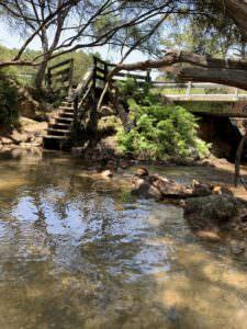 天然温泉@NZ