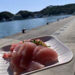 【熊野古道】那智勝浦『勝浦漁港 にぎわい市場』|朝市の海鮮定食・マグロ丼が手軽に楽しめる朝食