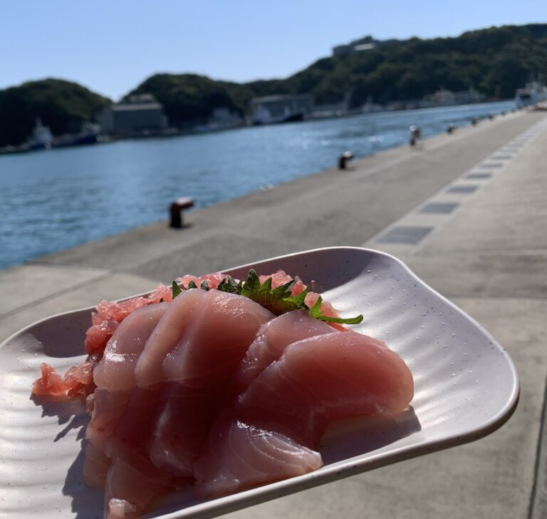 勝浦漁港 にぎわい市場 マグロ 定食